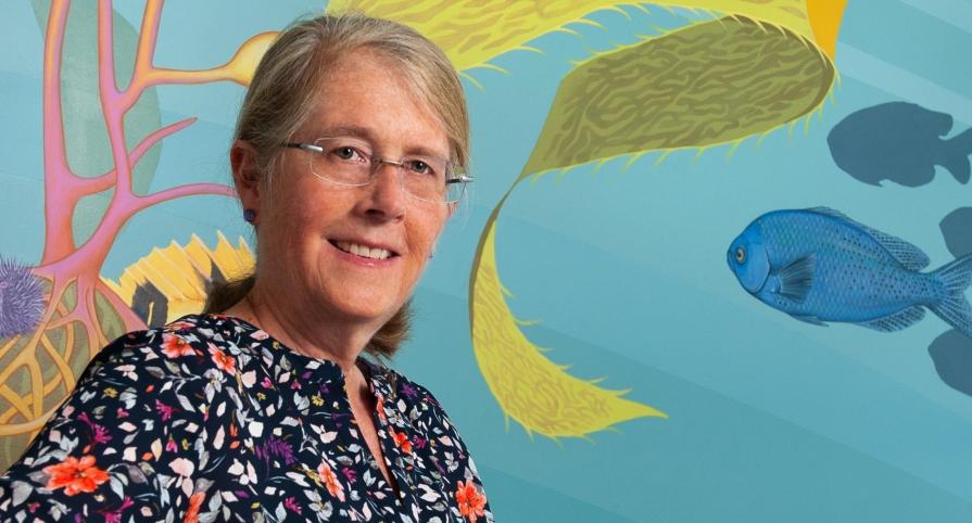 Dr. Kimberly Shriner